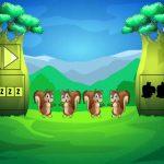 Grassy Land Escape