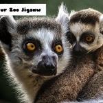 Lemur Zoo Jigsaw