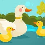 Mother Duck and Ducklings Jigsaw